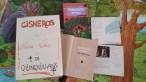 """""""O Espantallo Amigo"""" asinado polos Quinquilláns"""" no Auditorio de Ourense. Unha obra de Neira Vilas adaptada polos Quinquilláns."""